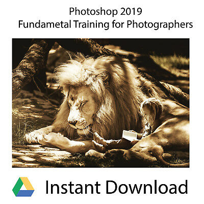 Adobe PhotoShop CC Training for Photographers 2019 - Instant Download