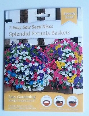 2 Easy Sow Hanging Basket Seed Discs - Petunia & Morning Glory Mix