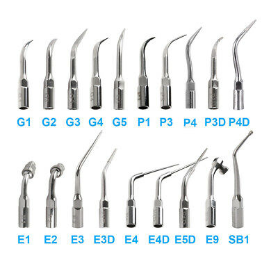 19 Type Dental Fit EMS Woodpecker G P E Ultrasonic Scaler Scaling Endo Perio Tip