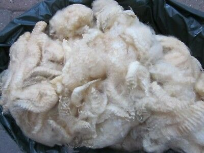 2 kg raw sheep wool for spinning