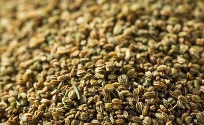 CELERY Seeds [herbs / spices ] Premium  quality + FREE POSTAGE