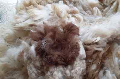 Alpaca Fleece Multi dark brown / white Fleece 500g - PRICE REDUCED