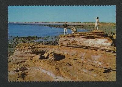 e2659)      POSTCARD SHOWING THE CLIFFS AT BROOME  in  WESTERN AUSTRALIA