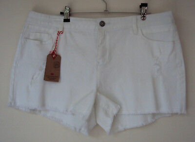 Lee Cooper white denim distressed stretch shorts -size 18. Brand new with tags