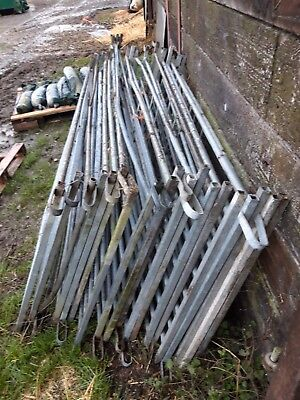 Galvanised sheep hurdles