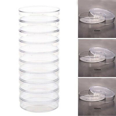 Polystyrene High Quality Clear 10pcs Crisp Affordable Petri Dishes Sterile