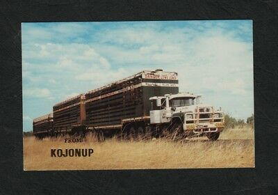 e3206 )          WESTERN AUSTRALIA POSTCARD -  KIMBERLEY CATTLE TRAIN