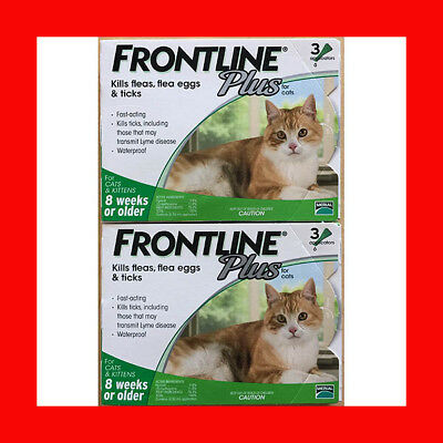 Frontline Plus 6 Month Supply For Cats Over 8-Weeks Fast Free Shipping