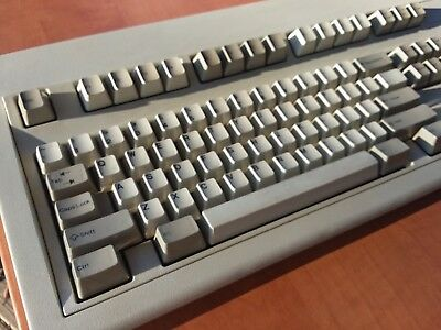 21bc7b305b2 IBM Model M 101 Clicky Keyboard (1390120) - 1986 Vintage Silver Label  Mechanical