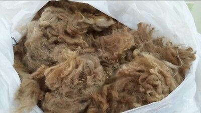 Alpaca Fleece Medium Fawn Approx 600-700g - PRICE REDUCED