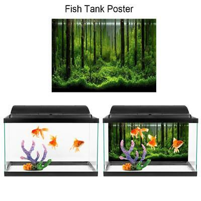 Underwater Coral Aquarium Background Poster Decorations Sticker Fish Tank Wall
