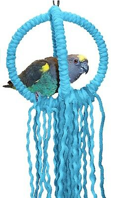 Small Blue Parrot Orbit Swing Toys Perches