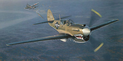 William S. Phillips INTO THE TEETH OF THE TIGER 18x27 S/N Canvas Giclee Aviation