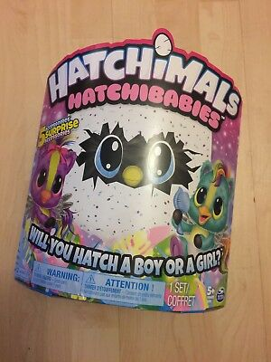 Hatchimals Hatchibabies Who Will You Hatch? Boy or Girl? 5 Surprise Accessories!