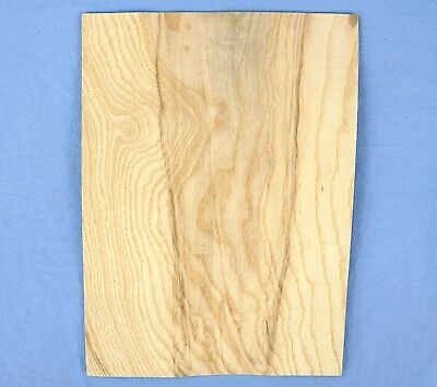 Olive Ash Burl Veneer 2 Bookmatched Wood Veneer Sheets 8