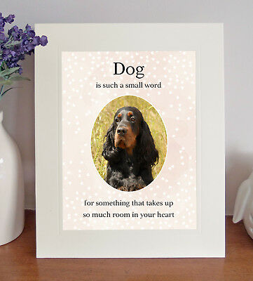 """Gordon Setter """"Dog is such a small word"""" 8x10 Picture Lovely Print Fun Gift"""