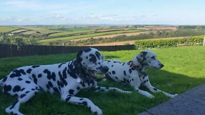 HOLIDAY HOME WITH HOT TUB SOUTH DEVON - GREAT VIEWS and DOG FRIENDLY