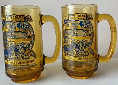 Notre Dame 1973 National Champions Brown Amber Drinking Glasses~Sugar Bowl