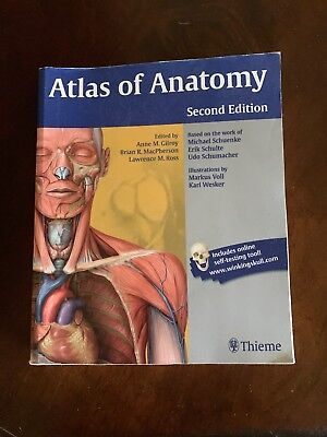 Of pdf anatomy atlas urosurgical hinmans
