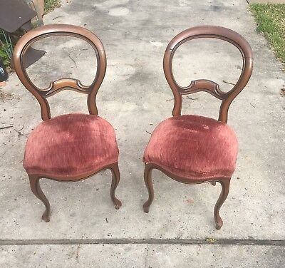 Victorian Style Baloon Back Chairs, Walnut. Soon To Be In An Estate Sale