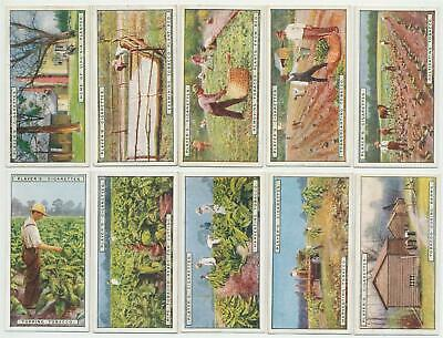 PLAYER, John- 1926 : From Plantation To Smoker Complete Set (25) Cigarette Cards
