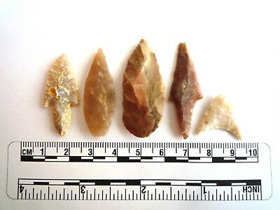 Neolithic Arrowheads x 5, High Quality Selection of Styles - 4000BC - (2441)