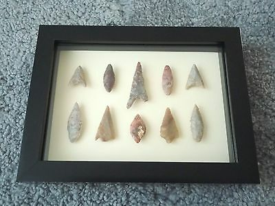 Neolithic Arrowheads in 3D Picture Frame, Authentic Artifacts 4000BC (0178)