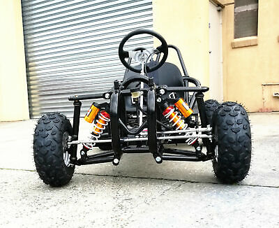 Off Road Go Kart Single Seat Adult Teenage 270Cc Elec/start Large 7 Inch Wheels