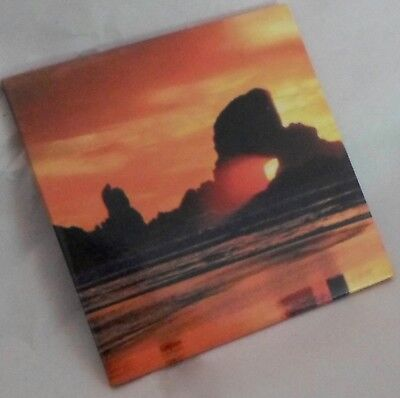 Mexican Sunset Refrigerator Magnet