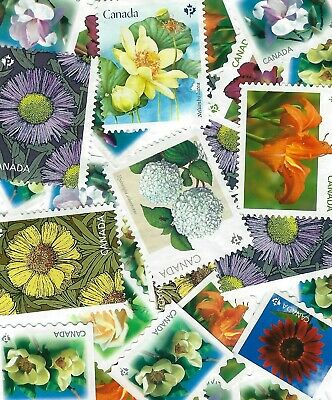 Uncancelled 28 P STAMPS FLOWERS CANADA FACE VALUE ($25,20)