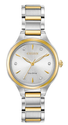 Citizen Eco-Drive Women's Corso Diamond Accents Two-Tone 29mm Watch FE2104-50A