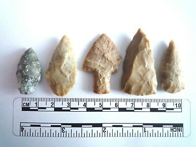 5 x Native American Arrowheads found in Texas, dating from approx 1000BC  (2220)