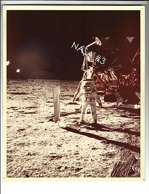 NASA Buzz Aldrin on the Moon with Lunar Lander Photo Print 8x10