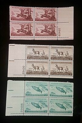 1956 Plate Blocks Set 1077 1078 & 1079! Mint MNH US Stamps wildlife conservation