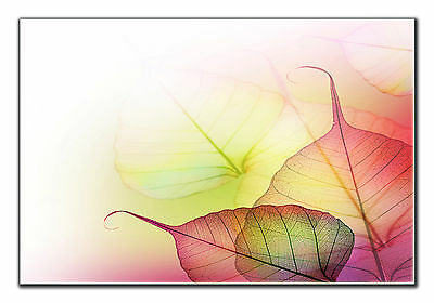 Abstract Flower Leaves Canvas Wall Art Picture Print Home Bathroom Bedroom Decor