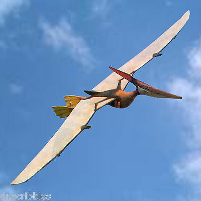 """Model airplane plans Pteranodon Soarer 86"""" radio control plans & article on Cd"""