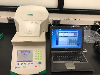 Bio-Rad MYIQ Real-time PCR system-New Performance Service