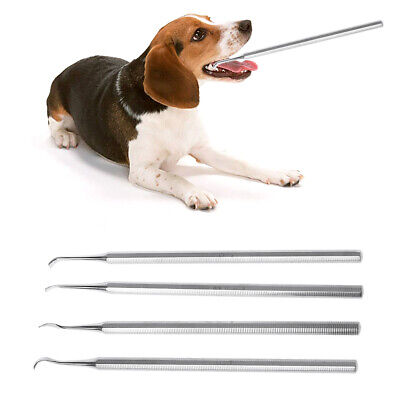 Silver Dog Dental Tooth Double End Scaler for Plaque Tartar of Dog Cat Removal