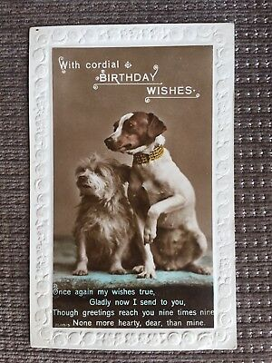 With Cordial Birthday Wishes Dog Puppy Vintage Real Photograph Card