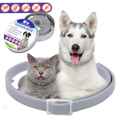 4pcs Flea & Tick Collar for Large Dogs Over 18 lbs 8 Month Protection Waterproof