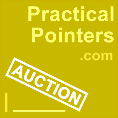 19 YEARS!! MOZ 9/8 Practical Pointers.com GODADDY PREMIUM brandable DOMAIN aged!