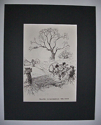 Dog Cartoon Print Norman Thelwell Dangerous Poultry Bookplate 1964 8x10 Matted