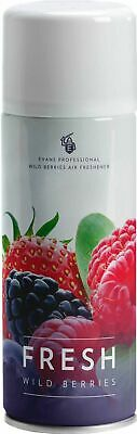 EVANS FRESH - Wild Berry Dry Formulation Air Freshener Aerosol (400ml)
