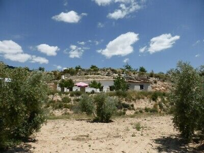 Cave house/ Farm house Andalucia 4 bedroom + land