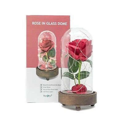 Beauty and the Beast Disney Enchanted Rose Rose in Glass Dome  with Light Up