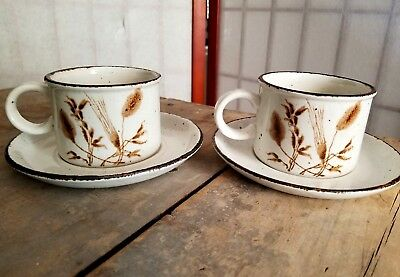 Vintage MIDWINTER STONEHENGE Wild Oats 2 Cups/Mugs & Saucers OVeN To TaBLe