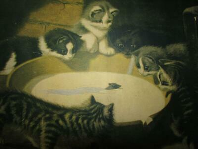 Antique Victorian 1901 Kitty Cat Picture Mouse In Milk