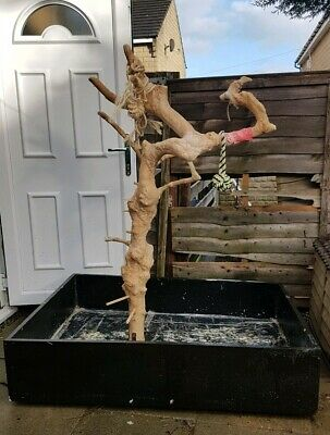 Large Parrot Java Tree Stand With Huge Custom made Base