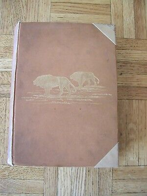 Travel and Adventure in South-East Africa FC Selous HC 1st 1893