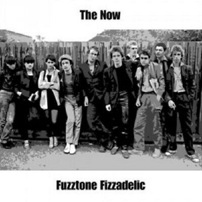 The Now - Fuzztone Fizzadelic  CD  13 Tracks  Alternative Rock & Pop  Neuf